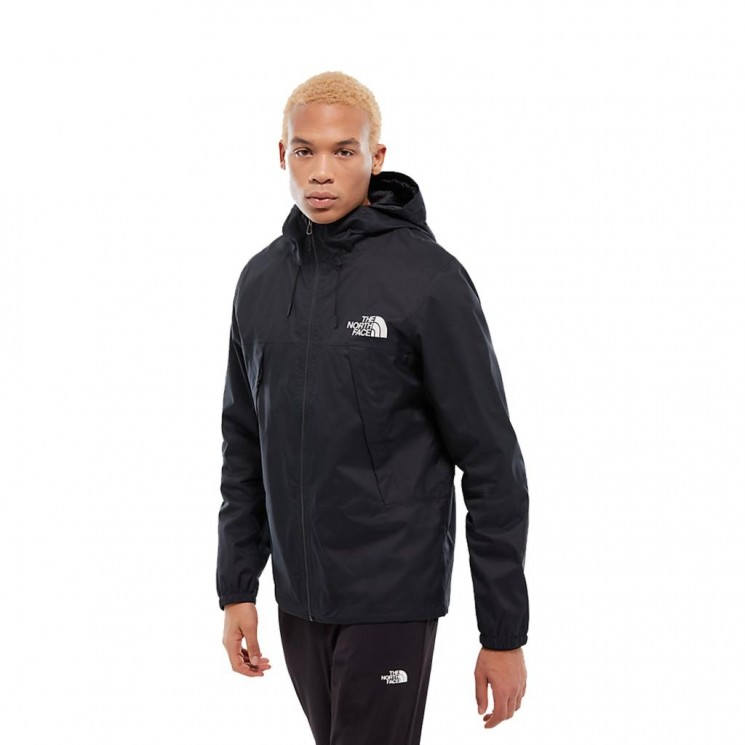 Parka The North Face M 1990 Mountain Q JKT